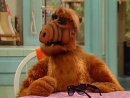 Alf Quote Season 2 Episode 21_Alf_Brayan_Ябеда
