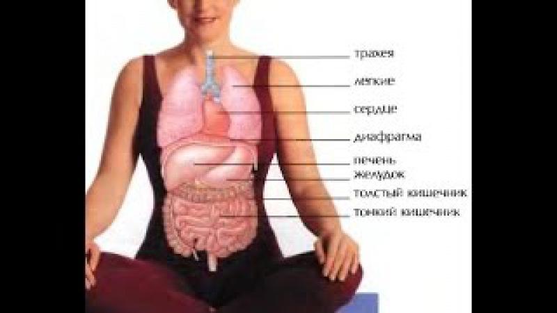 полное дыхание энергетическая зарядка, тренинги и правильно подышим