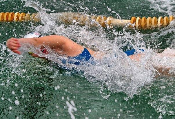 Спортсмены из Хабаровского края успешно выступили на втором этапе Кубка мира по зимнему плаванию