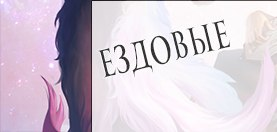 vk.com/album-119391899_231109991