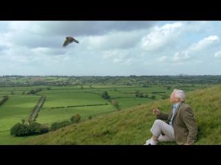 BBC: Аттенборо. 60 лет с дикой природой - Жизнь в объективе камеры (1 серия из 3) HD 720