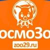 КосмоЗоо - интернет зоомагазин в Архангельске
