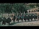 300 спартанцев (США, 1962) исторический, дубляж, советская прокатная копия