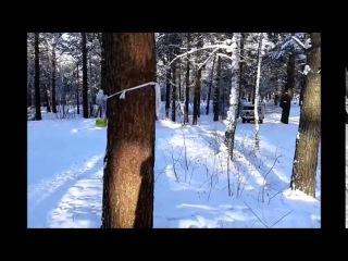 Де Барра Хаус Фелиция Де Барра Хаус Своя Игра-зимнии прогулки