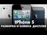 Замена Экрана (Дисплея) iPhone 5. Пошаговая инструкция