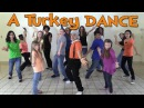 Thanksgiving Songs for Children - A Turkey Dance - Dance Songs for Kids