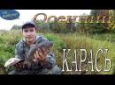 Карась в сентябре хороший карась видео Осенняя рыбалка на карася