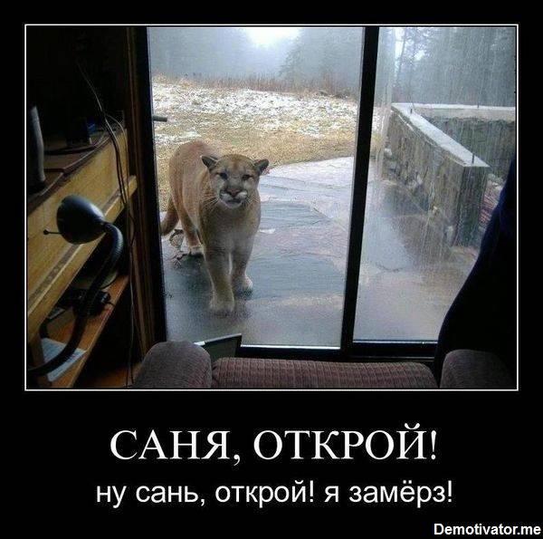 """""""Надежные партнеры так не делают - темы приостановления в двустороннем меморандуме не было"""", - Арьев о решении ЕС по безвизу для Украины - Цензор.НЕТ 8111"""