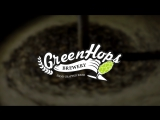 Краткий обзор на пивоварню GreenHops Brewery
