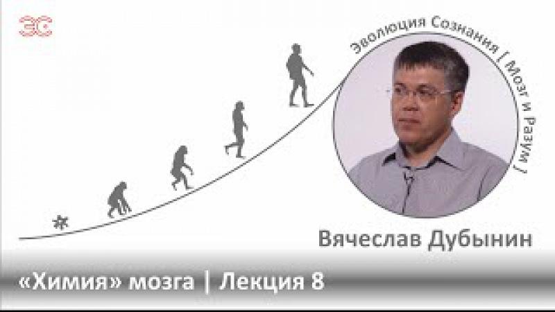 Вячеслав Дубынин / «Химия» мозга / Лекция 8. Серотонин, антидепрессанты, ЛСД и т. д.