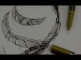 Pen &amp Ink Drawing Tutorials  How to draw feathers with pen &amp ink