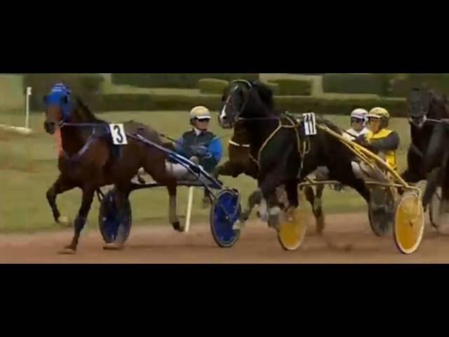 Eme Grand Prix Du Sud Ouest 2016_Timoko_Björn Goop