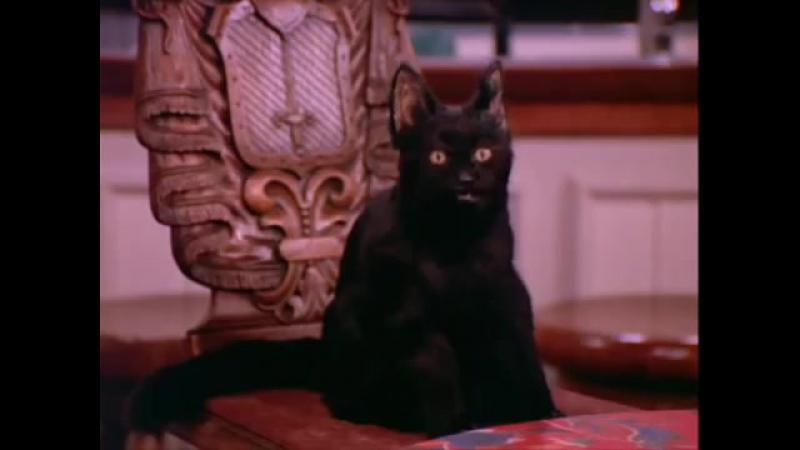сабрина маленькая ведьма. кот салем лучшие моменты сезон 1