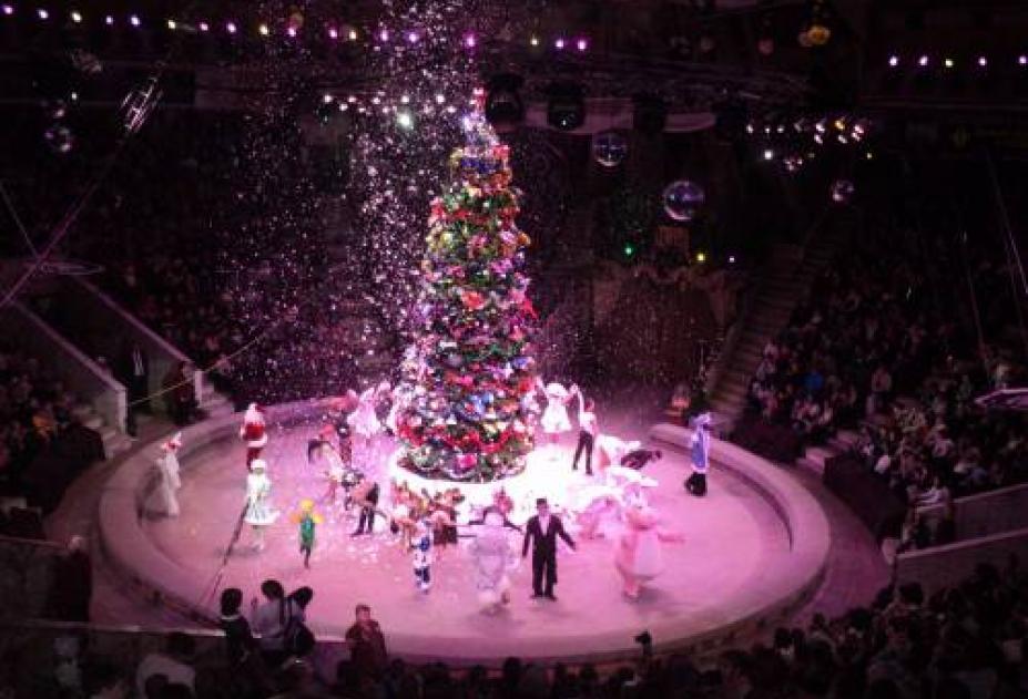Губернаторские новогодние елки – традиционно долгожданные символы наступающего года