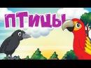 ПТИЦЫ! Учим животных для самых маленьких! Развивающие мультфильмы для детей