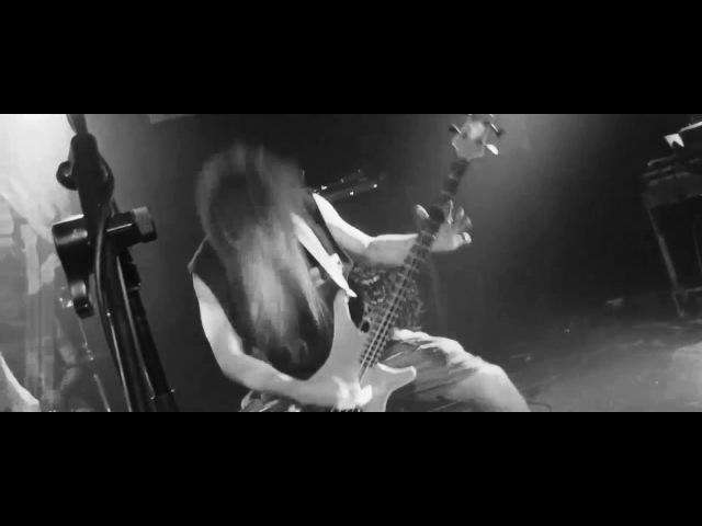 Insanity Alert - Metal Punx Never Die!