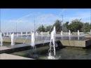 Санкт- Петербург Парк 300 - летия Петербурга. Август 2016 Прогулки по Петербургу