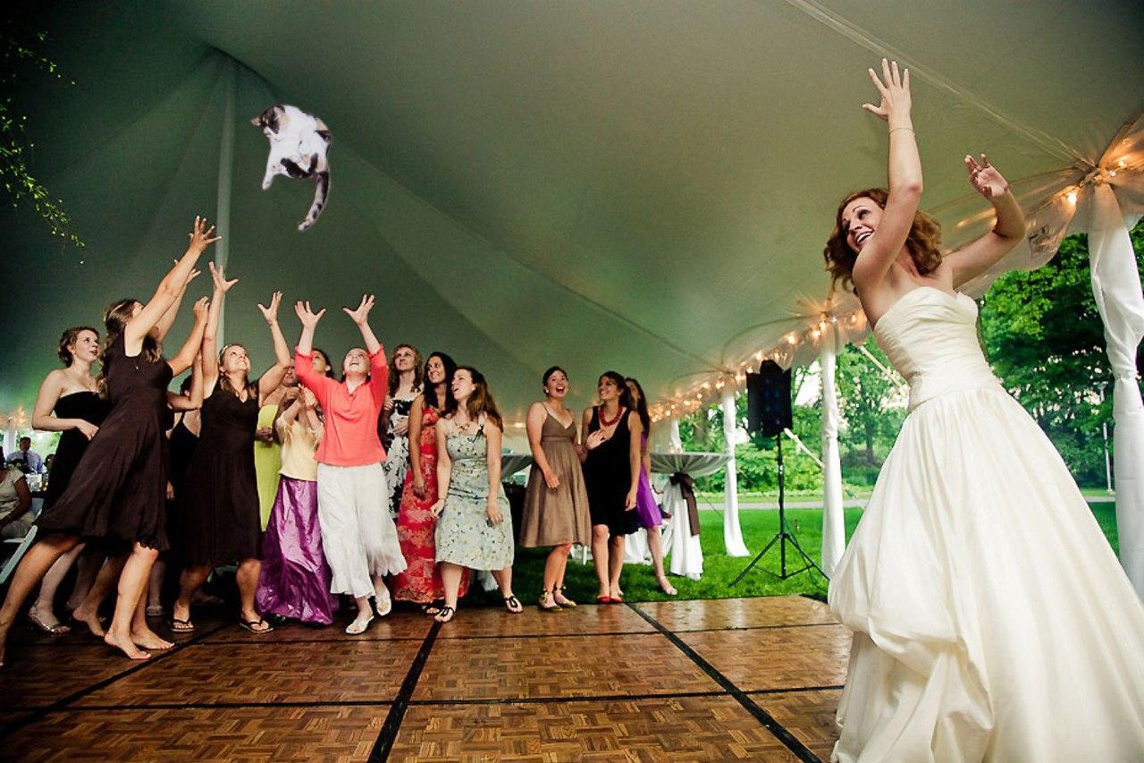 Что вытворяют на свадьбах фото 14 фотография