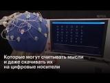 Симбиоз человека и компьютера новая технология Илона Маска