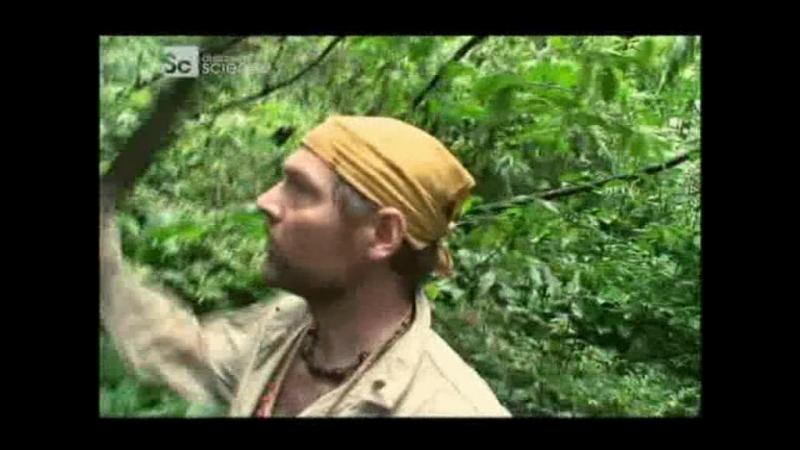 Наука выживать - Амазония