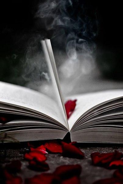 софья ролдугина все книги