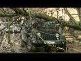 Из-за резкого ухудшения погоды вцентре ина юге России силы МЧС приведены впо ...
