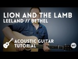 Lion and the Lamb - Leeland Bethel - Tutorial (acoustic guitar)