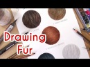5 METHODS TO DRAW REALISTIC FUR! Coloured Pencil Drawing Tutorial- Episode 4