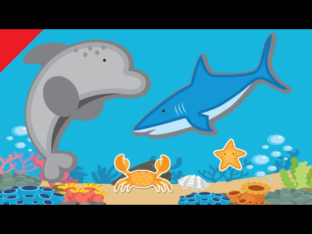 Learn Sea Animals Water Animals Names | Learn Vocabulary | ESL for Kids | Fun Kids English