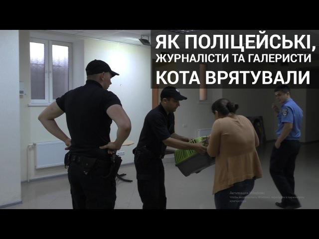 Як поліцейські, журналісти та галеристи кота врятували