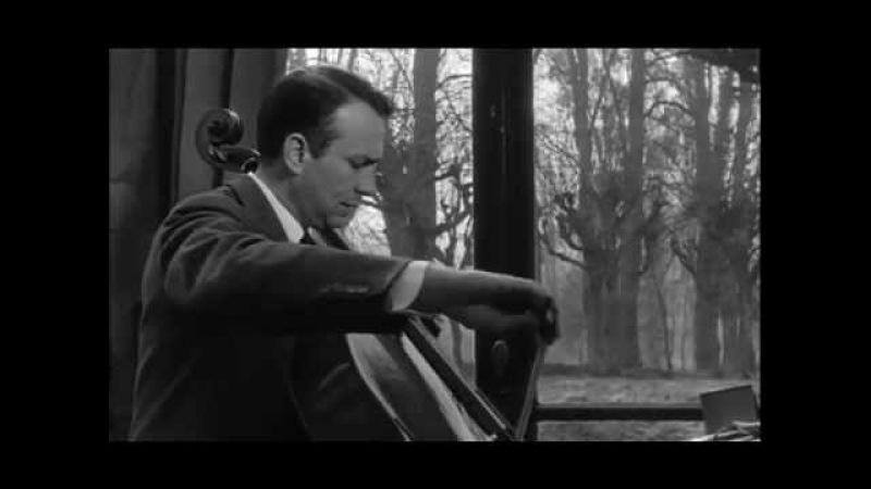 Maurice Gendron: Métamorphose du violoncelle, directed by D. Delouche