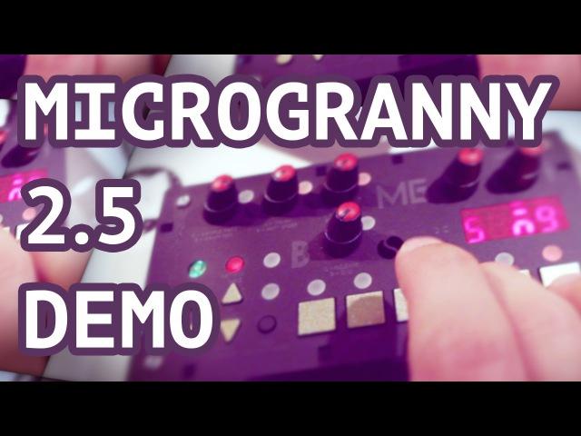 MicroGranny 2.5 Demo TTNM