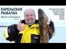 Зимняя рыбалка в Карелии. Весна в Заонежье. Часть 1