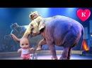 ЦИРК ОГРОМНЫХ ЗВЕРЕЙ Развлечение для детей Видео для детей