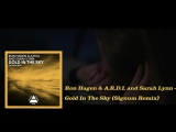 Ron Hagen A.R.D.I. and Sarah Lynn - Gold In The Sky (Signum Remix)