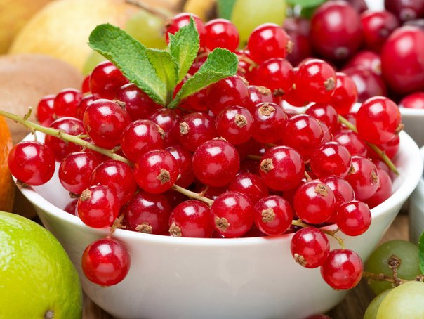 ингредиенты монастырского чая диабет