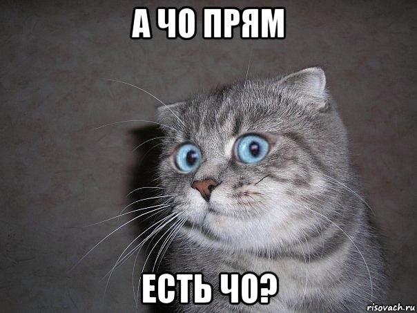 MEFwoiC0IbU.jpg