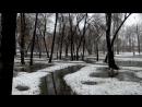 22 апреля 2017 г. Сквер Нефтянников Гуренков