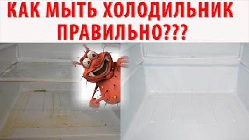 КАК ПОМЫТЬ ХОЛОДИЛЬНИК ИДЕАЛЬНО?! Генеральная уборка холодильника. Убираем плесень, грязь.