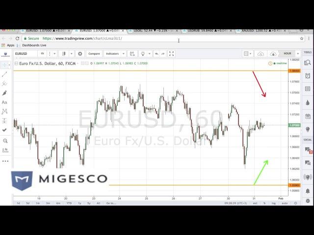 Бинарные опционы MIGESCO - Торговые идеи на неделю с 30.01 по 3.02