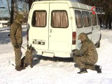 Мохнатый спецназ на страже порядка Харьковская Нацгвардия тренирует боевых собак - 08.02.2017