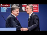 Трамп заставит НАТО