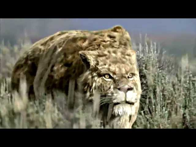 SMILODON - Sabre Toothed Beast [HD]