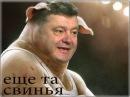 Капитан Ураган Шоколадный поросёнок (Петру Порошенко) шуточная песня под гитару