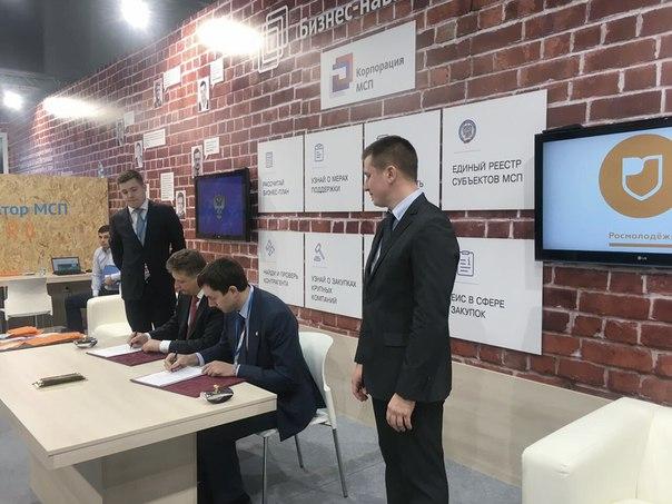 Владимирская область представила свой опыт реализации программы «Ты —
