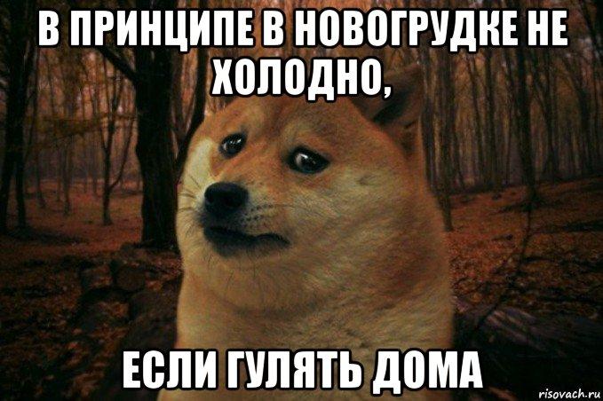 https://pp.vk.me/c626418/v626418694/30451/_Zv3GH04PJo.jpg