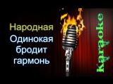 Народная - Одинокая гармонь ( караоке )