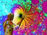 Yahel - Soul (Indra Remix) - 2008