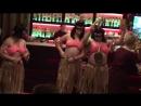Гости из Новой Гвинеи
