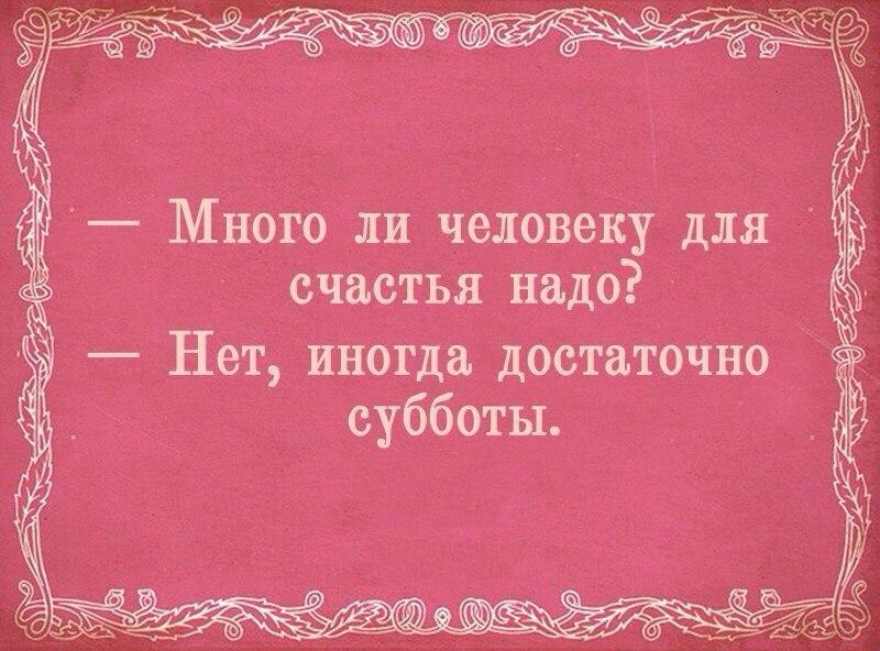 irhJccL-tig.jpg
